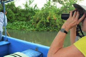 Birding on the Rio Huitzilapan & La Antigua Tour Discover Vercruz Tours (1)