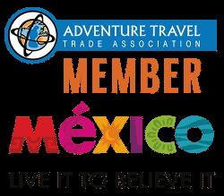 discover veracruz mexico tours (Custom)