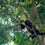 explore-tropical-veracruz-g-5